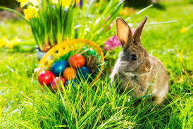 10 Things You May Not Know About the Easter Bunny | Mental Floss